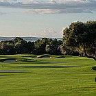 Where to play golf in Majorca?